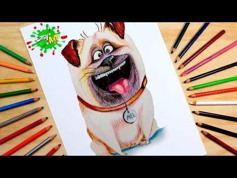 Como dibujar a Mel de Mascotas fácil