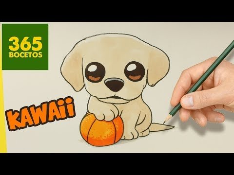 Como dibujar un cachorro de Labrador fácil