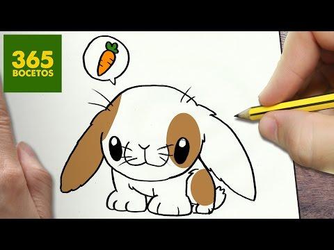 Como dibujar un Conejito de campo