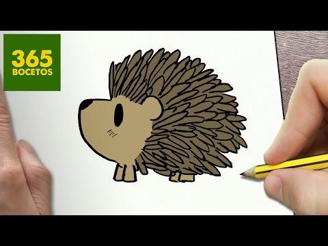 Como dibujar un Erizo