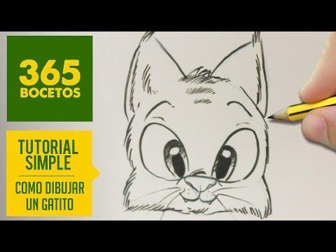 Como dibujar un gato dulce