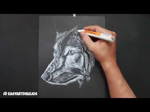 Como dibujar un Lobo realista