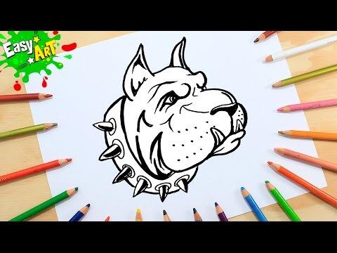 Como dibujar un perro Bóxer