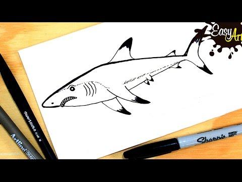 Como dibujar un Tiburón paso a paso