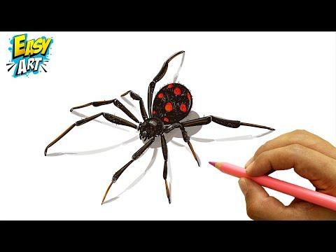 Como dibujar una Araña 3D para Halloween