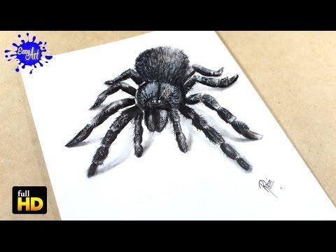 Como dibujar una Araña en 3D