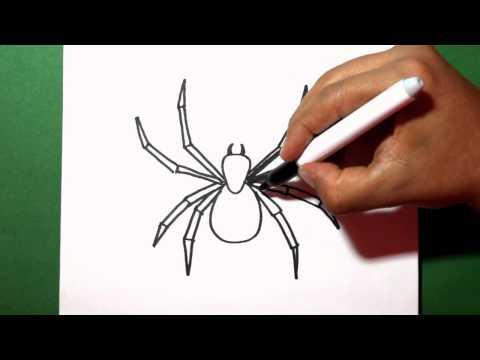 Como dibujar una Araña fácil