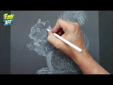 Como dibujar una Ardilla sobre negro