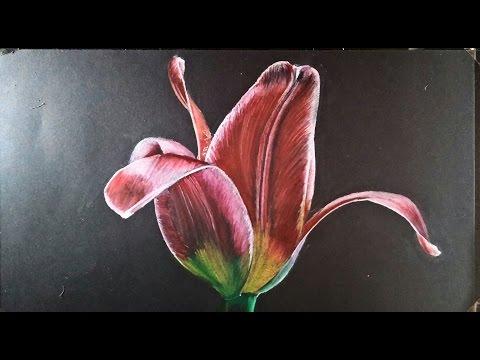 Como dibujar una Flor realista