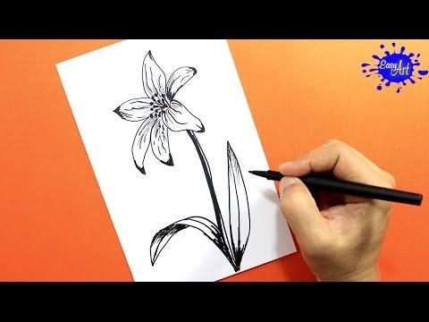 Como dibujar una Flor