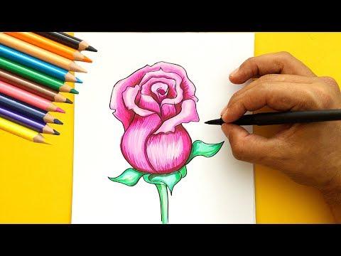 Como Dibujar Una Rosa Muy Fácil